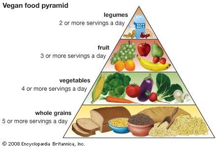 vegan pyramide